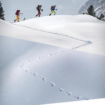 Alpenverein-příroda-skitouring