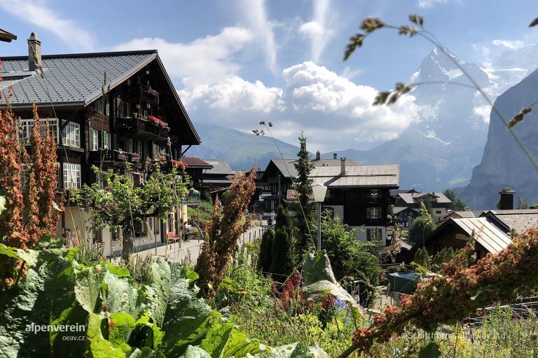 Alpenverein OEAV.CZ Schilthorn